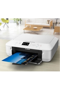 Multifunctional device Canon PIXMA MG5650 with refillable ink cartridges